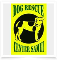 Dog & Cat Rescue Samui